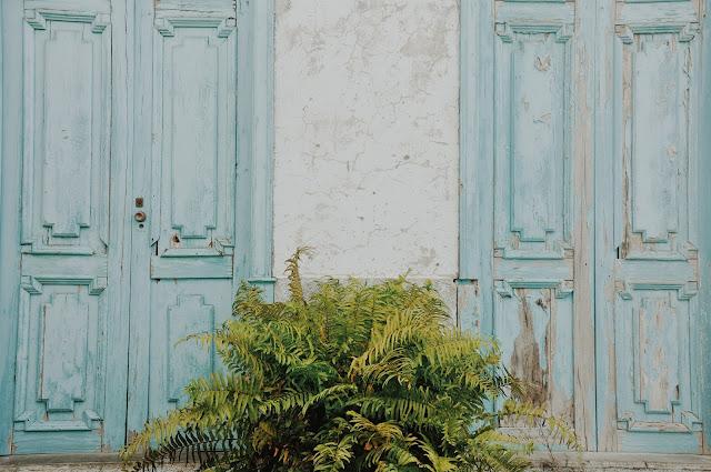 Fotografiando Canarias, ¡vive la vida! (n°1)