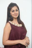 Nikki Galrani in a Brown Shining Sleeveless Gown at Nakshatram music launch ~  Exclusive 048.JPG
