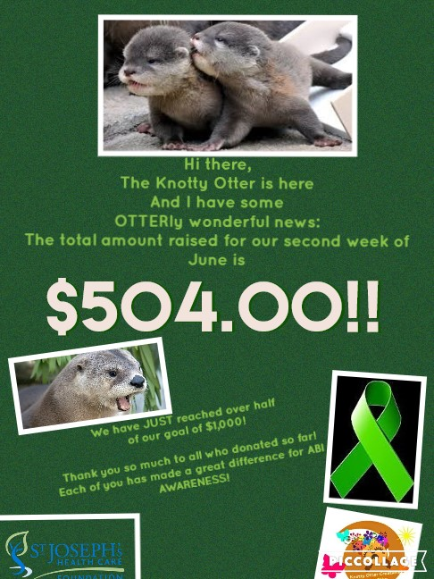 FUNDRAISING UPDATE FOR GREEN RIBBON CAMPAIGN