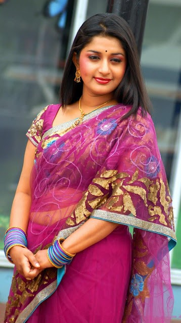 Meera Jasmine Latest Saree Photos  Indian Spicy Actress -6583