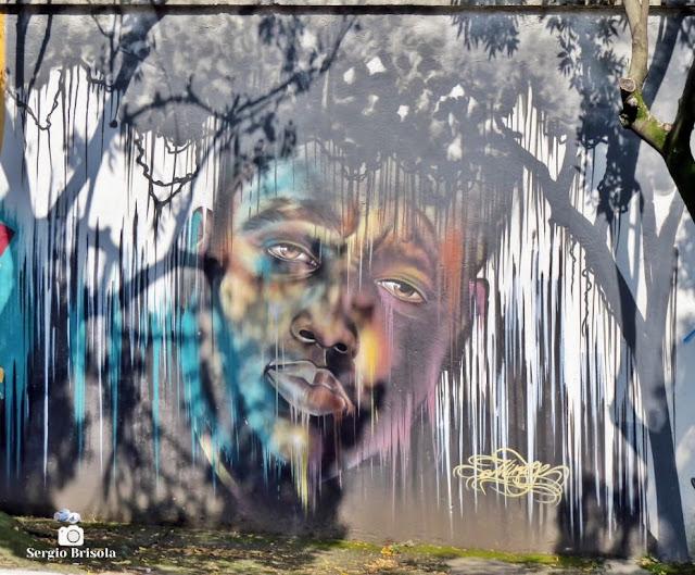 Close-up de Painel (grafite) na Vila Mariana - São Paulo