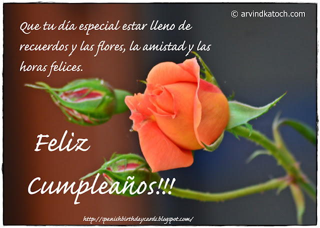 Spanish, Birthday Card, flores, Rose,
