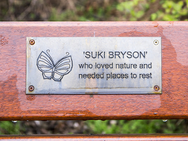 Suki's memorial bench
