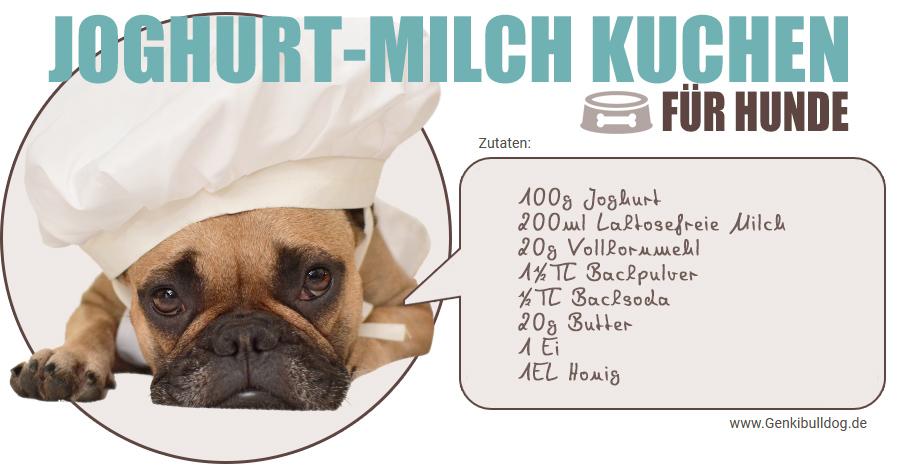 Joghurt Milch Hundekuchen rezept selbst backen laktosefrei