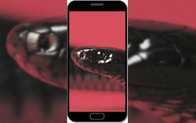 Red Belly Snake - Fond d'Écran en FHD pour Mobile