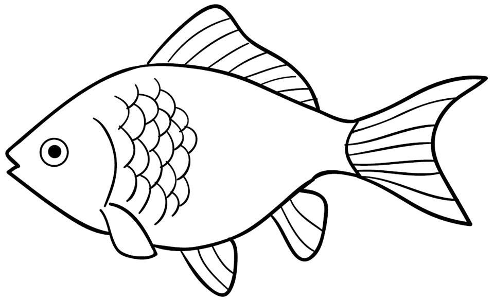 Informasi Belajar Anak Interaktif: Download Mewarnai Gambar Ikan