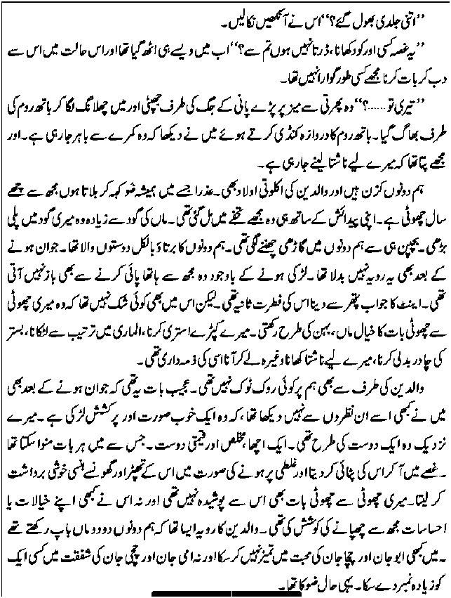 Novel By Riaz Aqib