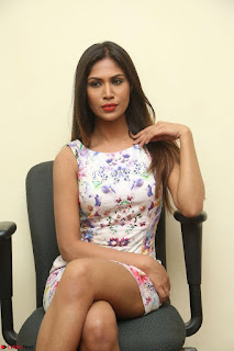 Nishi Ganda stunning cute in Flower Print short dress at Tick Tack Movie Press Meet March 2017 120.JPG