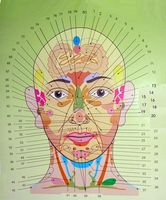 zonele faciale afectate de acnee indica bolile si afectiunile de care suferi