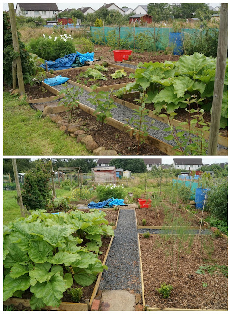 Andrew's parterre paths - 'growourown.blogspot.com' ~ an allotment blog
