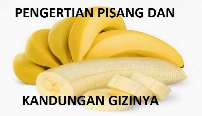 pengertian pisang dan kandungan gizinya