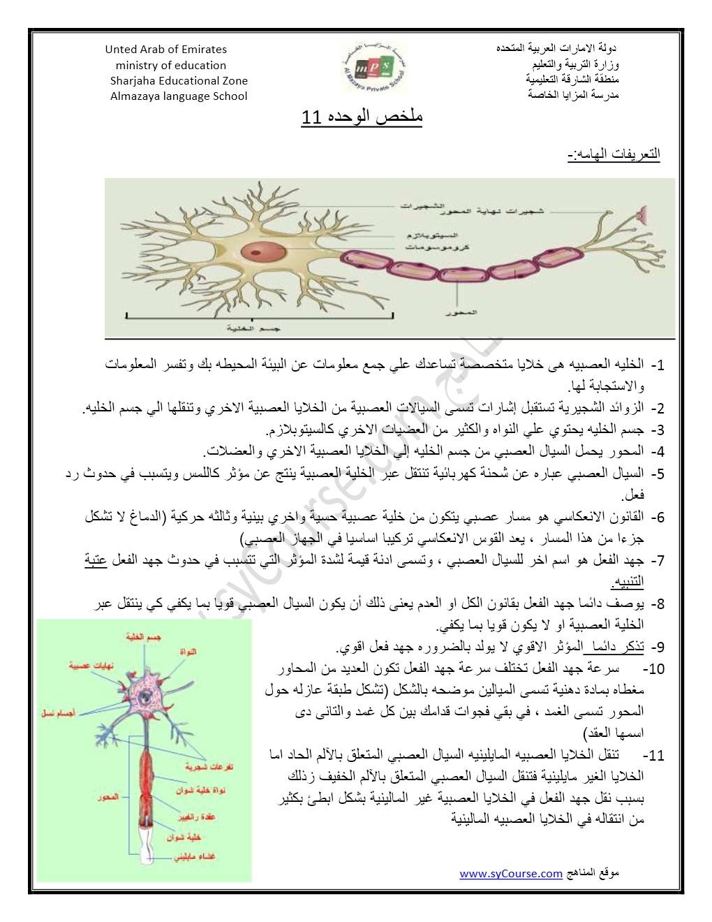 ملخص الجهاز العصبي أحياء للصف الثاني عشر المتقدم الفصل الأول 2019