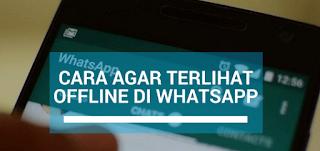 Cara Setting Whatsapp Agar tetap terlihat Offline