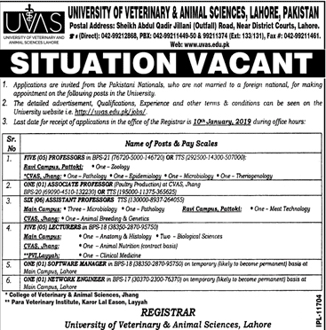University of Veterinary & Animal Sciences Jobs 2019 in Lahore www.uvas.edu.pk Jobs 2018