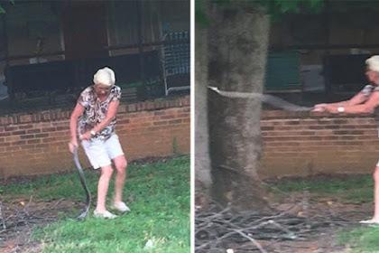 Aksi Nenek Bunuh Ular Mematikan dengan Tangan Kosong