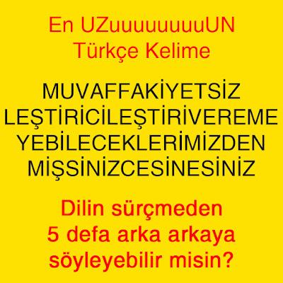 En Uzun Türkçe Kelime