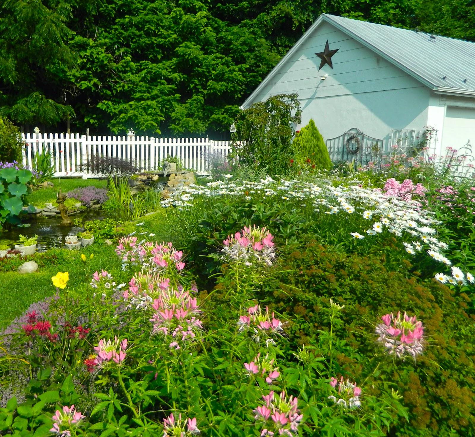 Garden Cottage: Pam's English Cottage Garden: My Garden Year In Review
