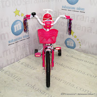 16 Emerson EM226 Girl Mini Kids Bike