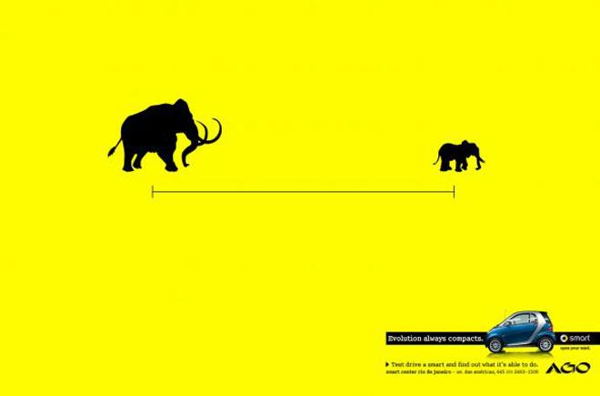Smart Evolución