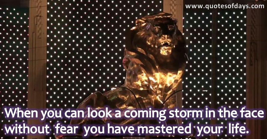 When you can look a coming storm in the face without fear you have mastered your life.