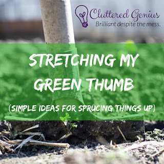 Blog With Friends, monthly mulit-blogger projects based on a theme | Stretching my Green Thumb by Lydia of Cluttered Genius | Presented by www.BakingInATornado.com