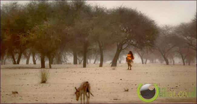 Sehel Region Africa