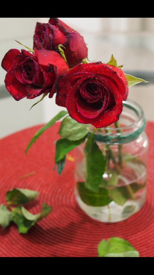 How to Keep rose last longer