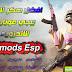 تحميل برنامج Fnmods Esp افضل كاشف وهكر في لعبة ببجي موبايل