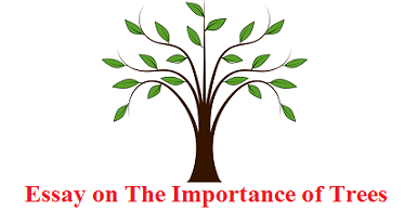essay on the importance of trees    words   wikiessays essay on the importance of trees    words