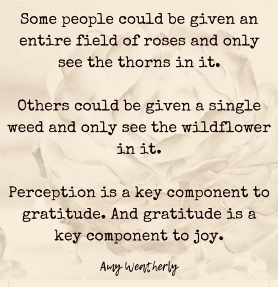 Perception is a key component to gratitude, and gratitude is a key component to joy