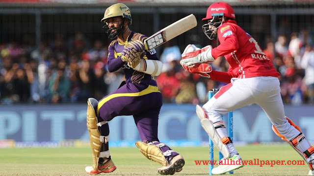 Download Dinesh Karthik IPL Photos