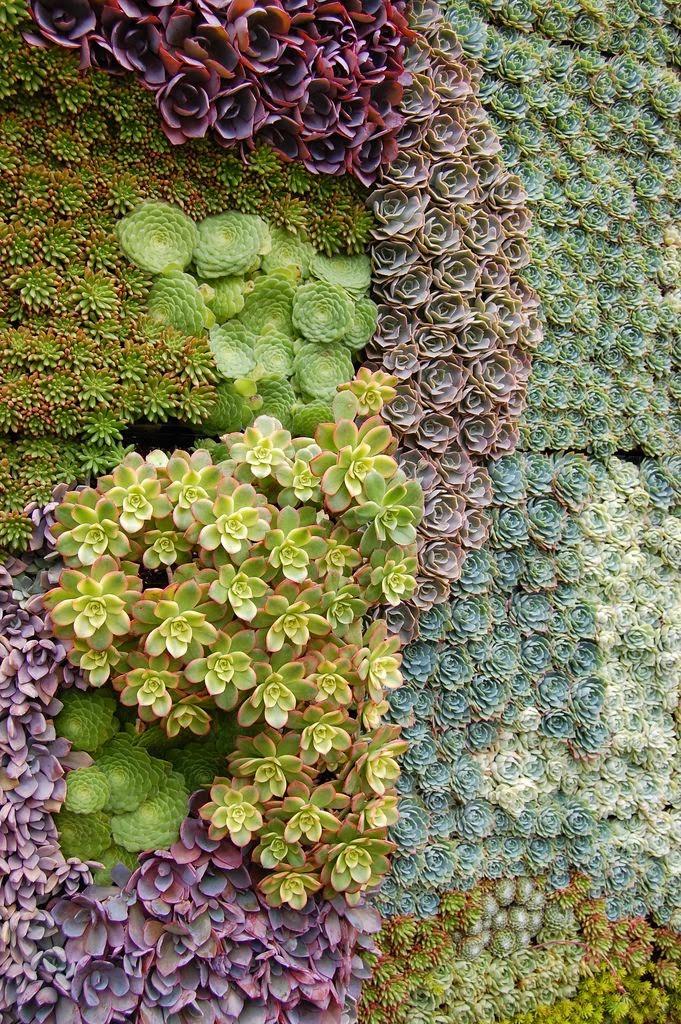 Ideas para decorar un jard n vertical casas decoracion for Ideas para jardines verticales