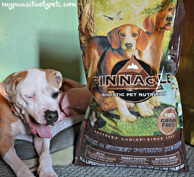 Holistic Health from Pinnacle Dog Food #PinnacleHealthyPets