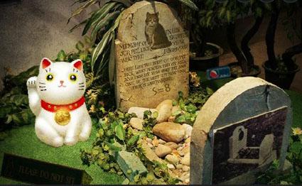 Cat Museum Mystery