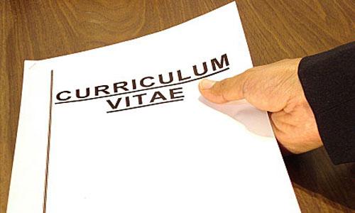 Contoh Curriculum Vitae