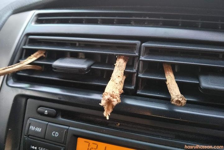 Cara hilangkan bau durian dengan gunakan tangkai
