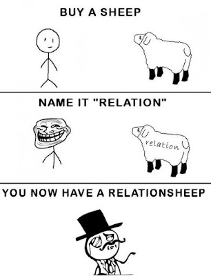 Sheep funny meme