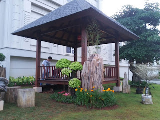 Tukang Taman di Bukit Cimanggu, Jasa Pembuat Taman di Bukit Cimanggu, Jasa Renovasi Taman di Bukit Cimanggu