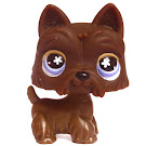 Littlest Pet Shop Special Scottie (#No #) Pet