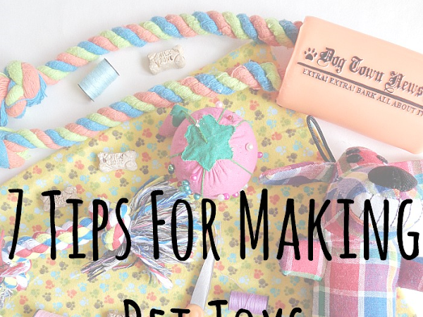 7 Tips For Making Pet Toys