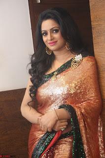 Udaya Bhanu lookssizzling in a Saree Choli at Gautam Nanda music launchi ~ Exclusive Celebrities Galleries 119.JPG