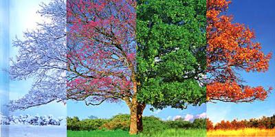 Les quatre estacions per en Pep Cassany