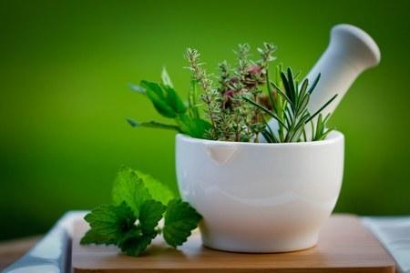 Resep-resep Tradisional untuk Beragam Penyakit