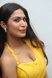 Nishigandha in Yellow backless Strapless Choli and Half Saree Spicy Pics 080.JPG