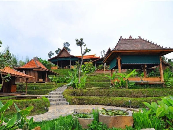 Jadul Village Resort & Spa