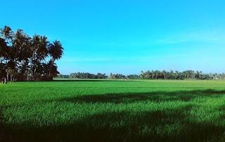 Lagenda Cerita Bak Tuwi