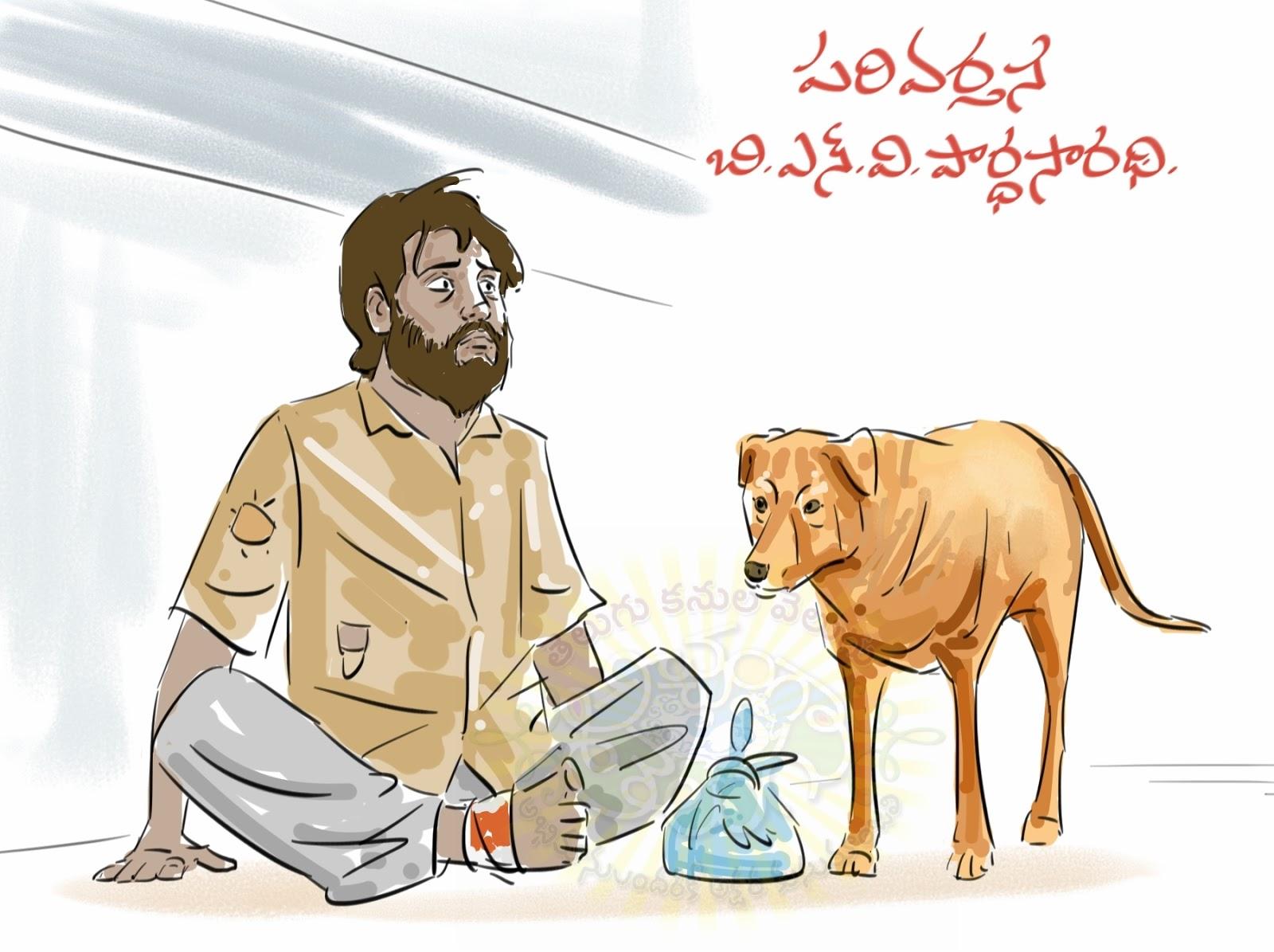 పరివర్తన కథాకదంబం, బి.ఎన్.వి.పార్థసారథి