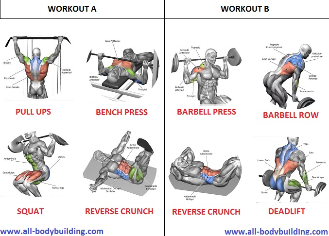 Day Mass Building Workout Routine