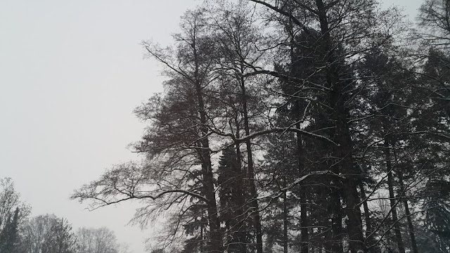Winter in Hradec Kralove, Czech