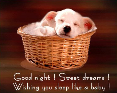 Good Night Messages Images 22 Good Night Wishes And Pictures
